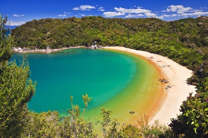 te-pukatea-bay-beach